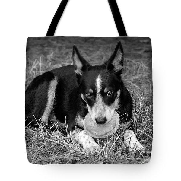 Pancake Dog Tote Bag