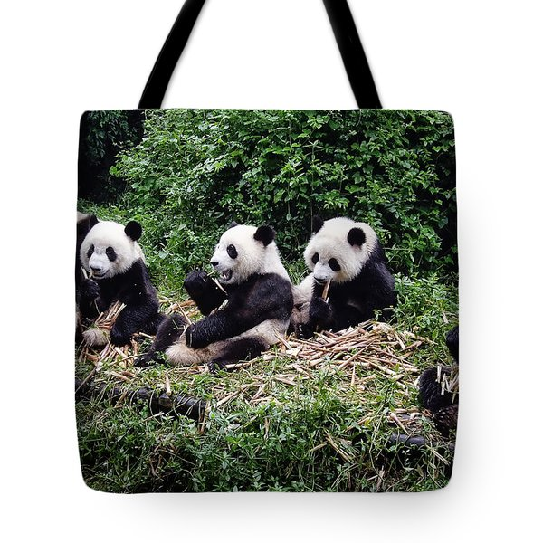 Pandas In China Tote Bag by Joan Carroll