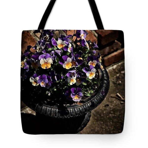 Pansies Tote Bag by Karol Livote