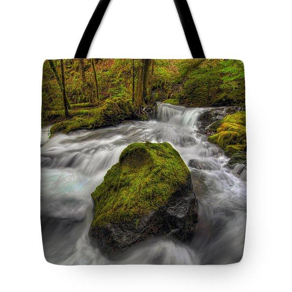 Panther Creek Falls Tote Bag by David Gn