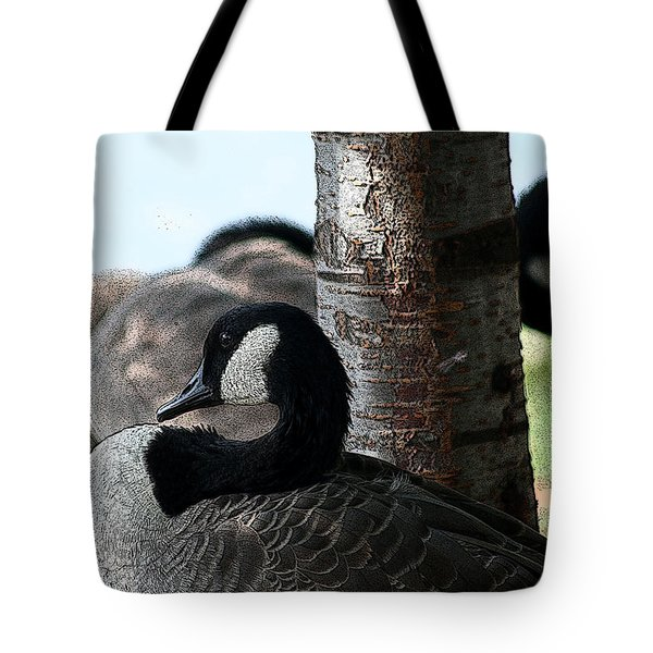 Tote Bag featuring the photograph Pap Daddy Big Spring Park by Lesa Fine