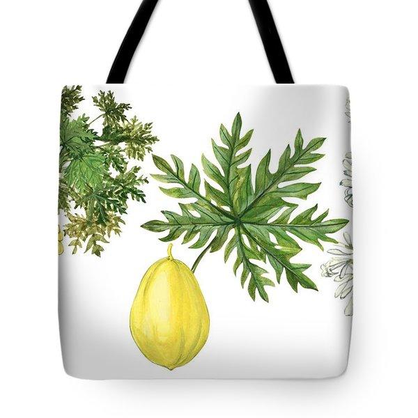 Papaya Tote Bag by Anonymous