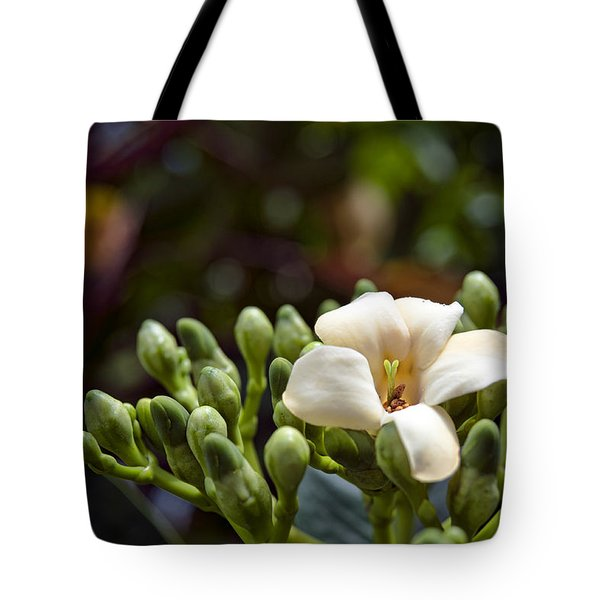 Papaya Flower Tote Bag