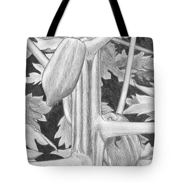 Papaya Tote Bag by Lew Davis