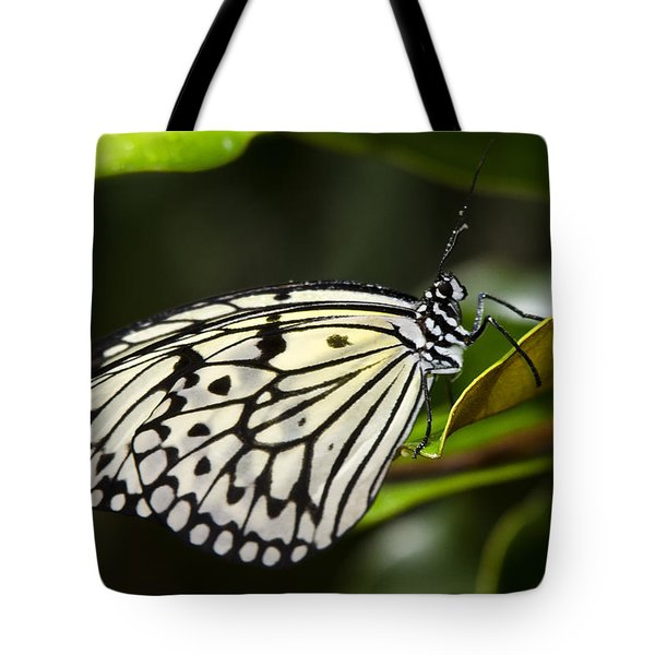 Paper Kite Butterfly On A Leaf  Tote Bag by Saija  Lehtonen