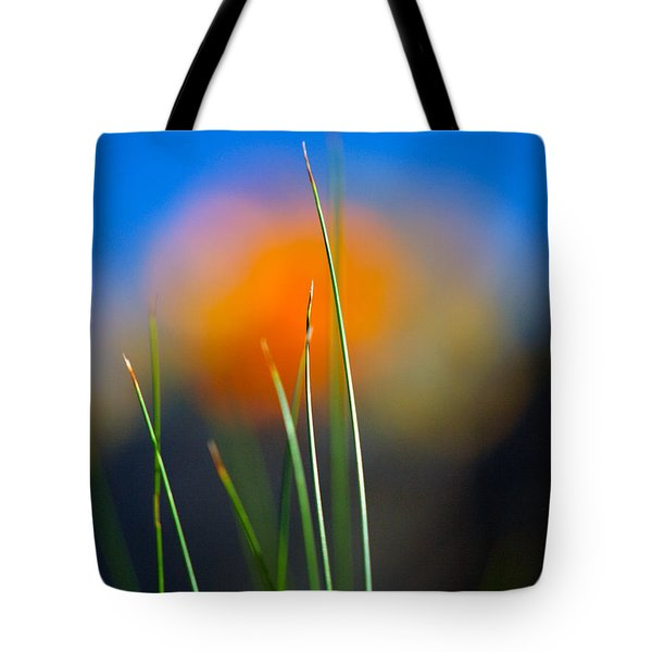 Papyrus Tote Bag by Joe Schofield