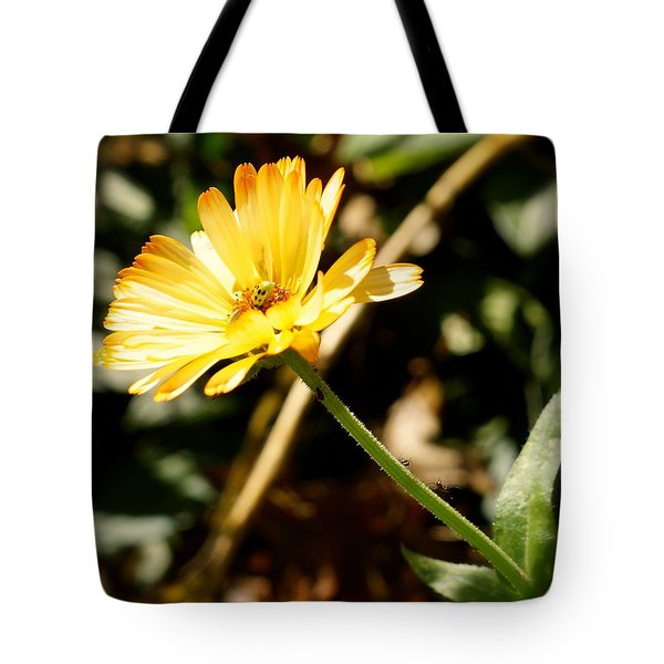 Tote Bag featuring the photograph Parade by Photographic Arts And Design Studio