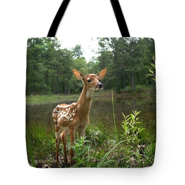 Paradise Found Tote Bag by Bill Stephens