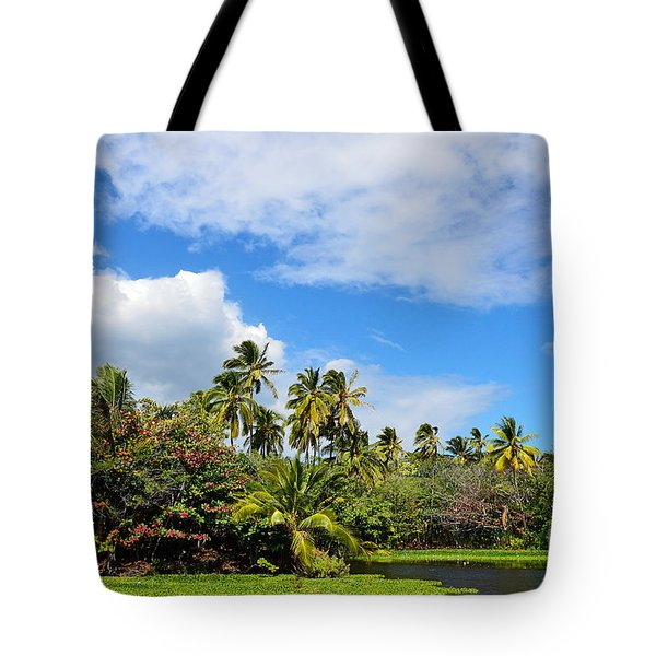 Tote Bag featuring the photograph Paradise Lagoon by David Lawson