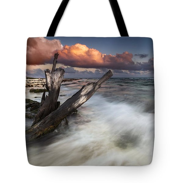 Tote Bag featuring the photograph Paradise Lost by Mihai Andritoiu