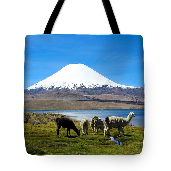 Parinacota Volcano Lake Chungara Chile Tote Bag by Kurt Van Wagner