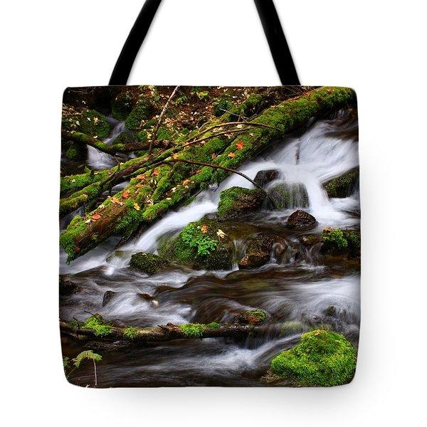 Paris Springs Tote Bag