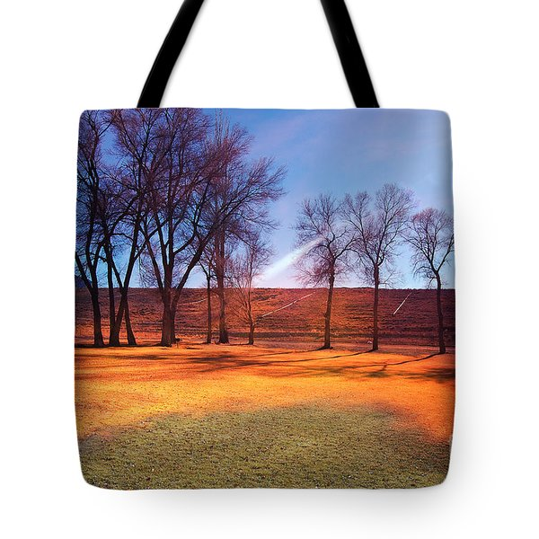 Park In Mcgill Near Ely Nv In The Evening Hours Tote Bag by Gunter Nezhoda