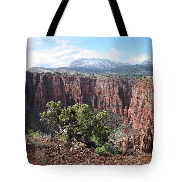 Tote Bag featuring the photograph Parker Canyon In The Sierra Ancha Arizona by Tom Janca