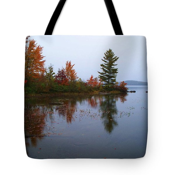 Parker Pond..before The Rain Tote Bag