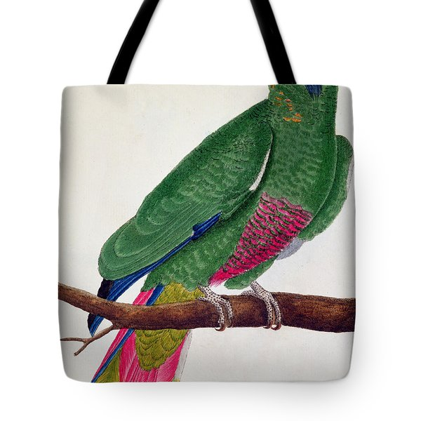 Parrot Tote Bag by Francois Nicolas Martinet