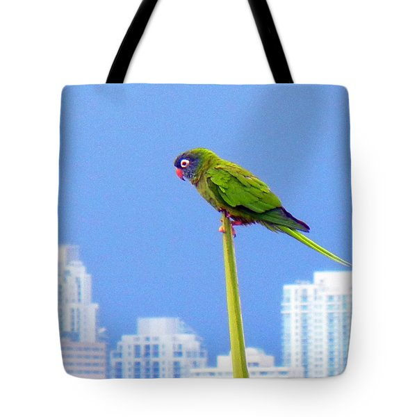 Parrot Tote Bag by J Anthony
