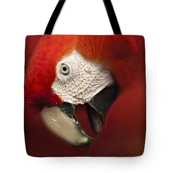 Parrot Portrait Tote Bag