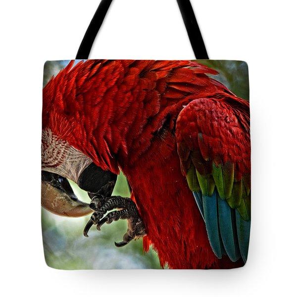 Parrot Preen Hdr Tote Bag