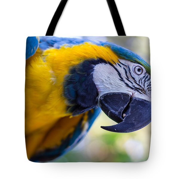 Tote Bag featuring the photograph Parrot by Randy Bayne