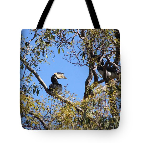 Hornbills With A Black Eye Tote Bag by Four Hands Art