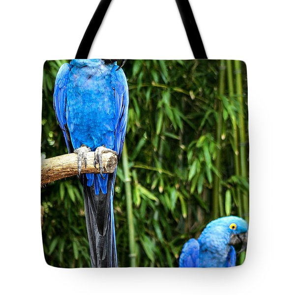 Parroting Parrots Tote Bag