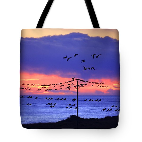 Tote Bag featuring the photograph Parrots by Bernardo Galmarini