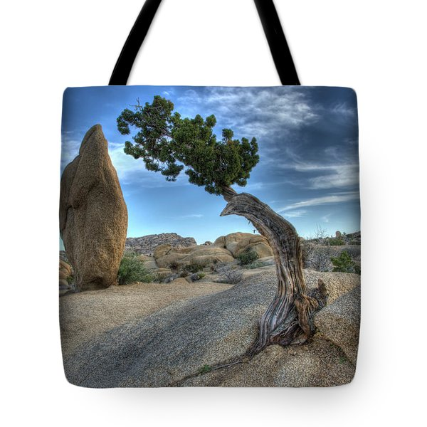 Partners Tote Bag by Bob Christopher