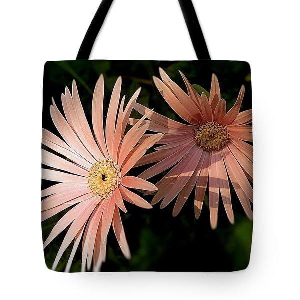 Tote Bag featuring the photograph Party Girls by Wallaroo Images