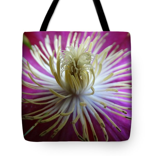 Party Hat Tote Bag by Jen Sparks