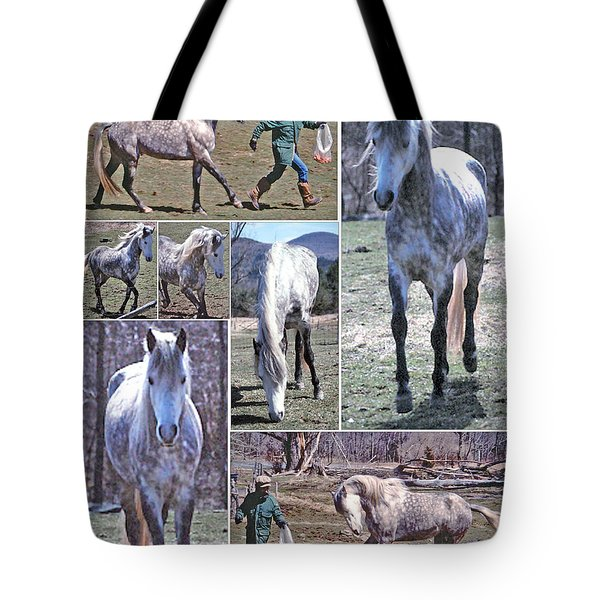 Paso Fino Stallion Horsing Around Tote Bag by Patricia Keller