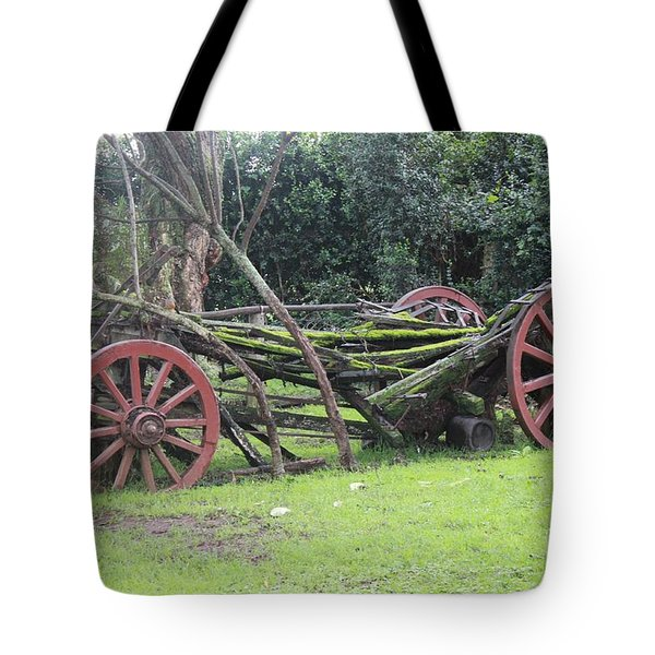 Passage Of Time All Profits Go To Hospice Of The Calumet Area Tote Bag