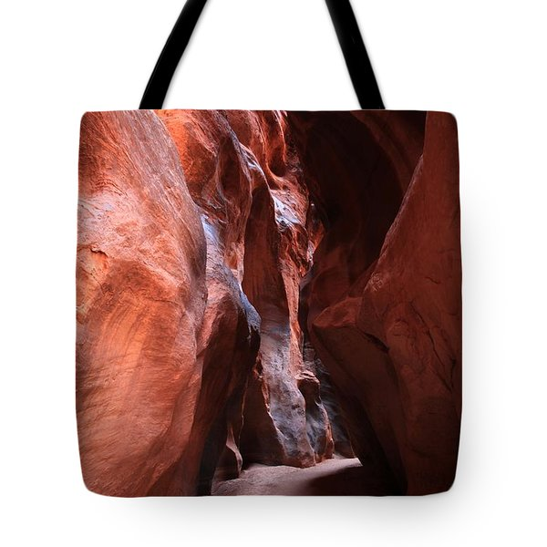 Passage Through The Slots Tote Bag