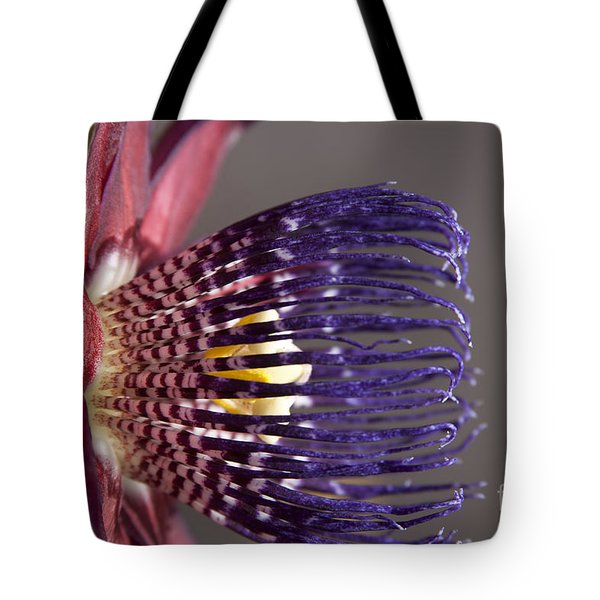 Passiflora Alata - Passion Flower - Ruby Star - Ouvaca Tote Bag by Sharon Mau