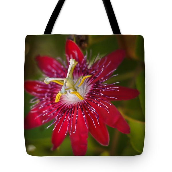 Tote Bag featuring the photograph Passion Flower by Jane Luxton