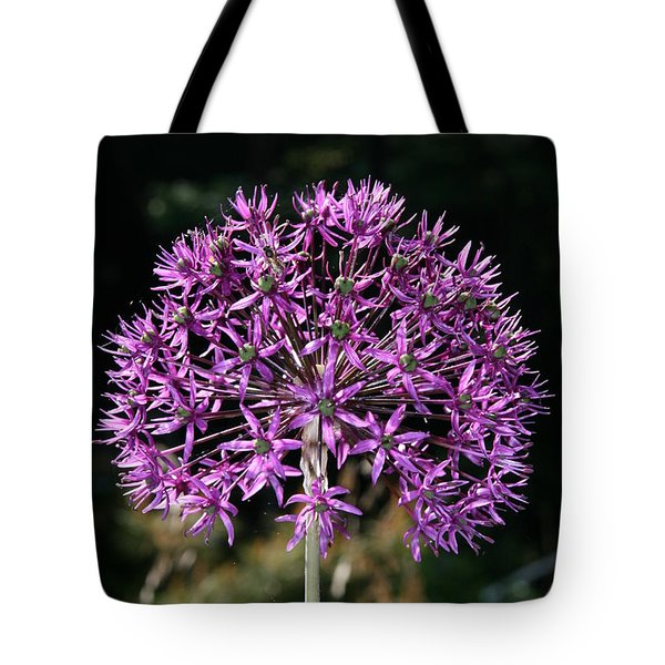 Passion No.2 Tote Bag by Neal Eslinger