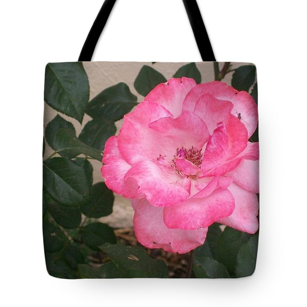 Passion Pink Tote Bag by Jewel Hengen