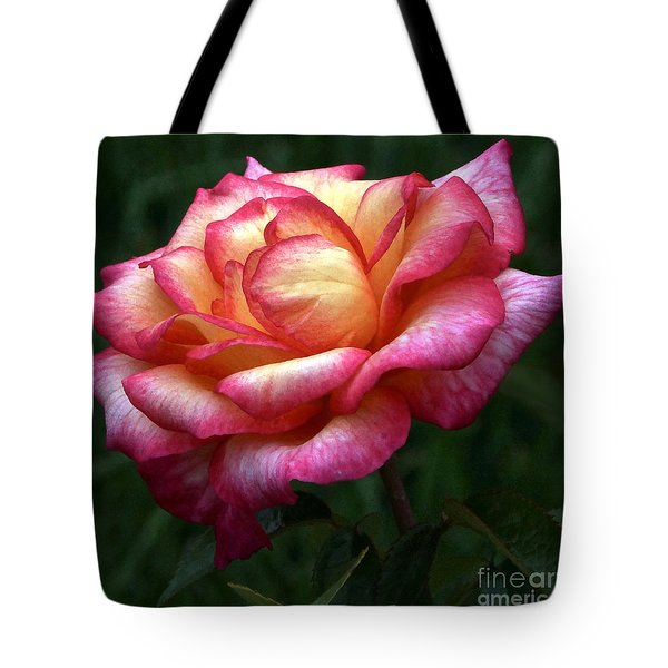 Passionate Shades Of A Perfect Rose Tote Bag