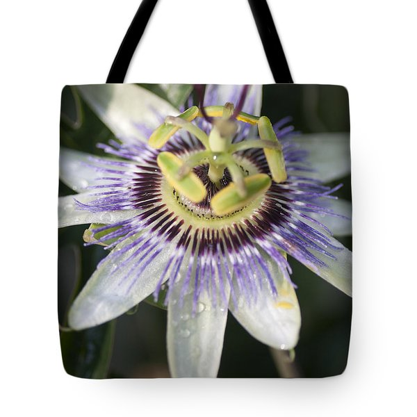 Passionflower Tote Bag by Richard Thomas