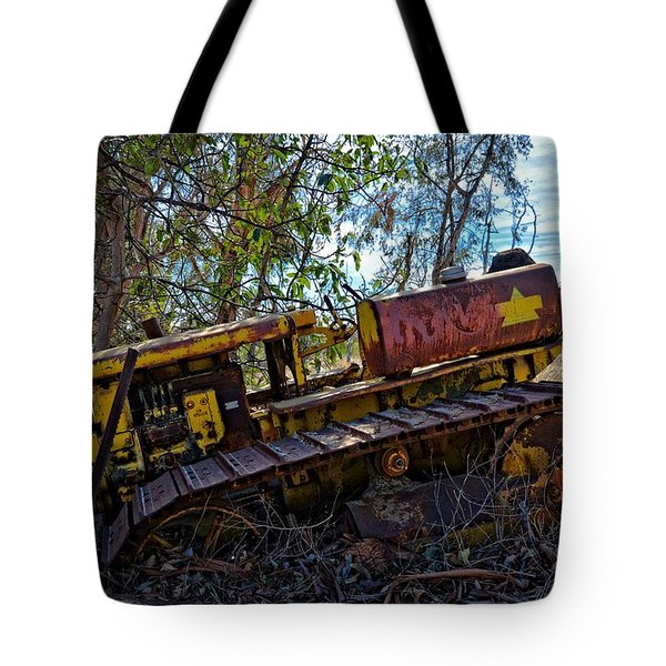 Past It's Prime Tote Bag by Lynn Bauer