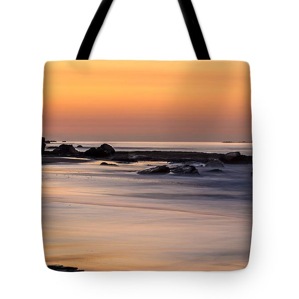 Past Meets Present By Denise Dube Tote Bag