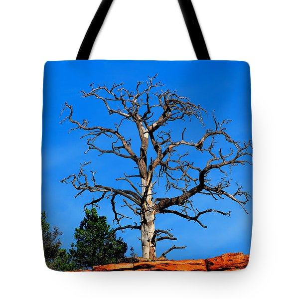 Tote Bag featuring the photograph Past Prime by Greg Norrell
