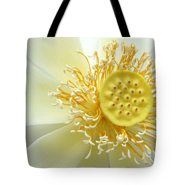 Tote Bag featuring the photograph Pastel Lotus by Sabrina L Ryan