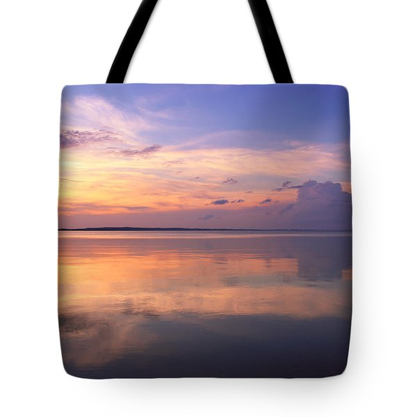 Pastel Majesty Tote Bag by Rachel Cohen