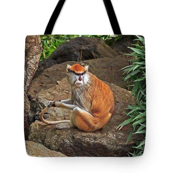 Patas Monkey Tote Bag by Kate Brown