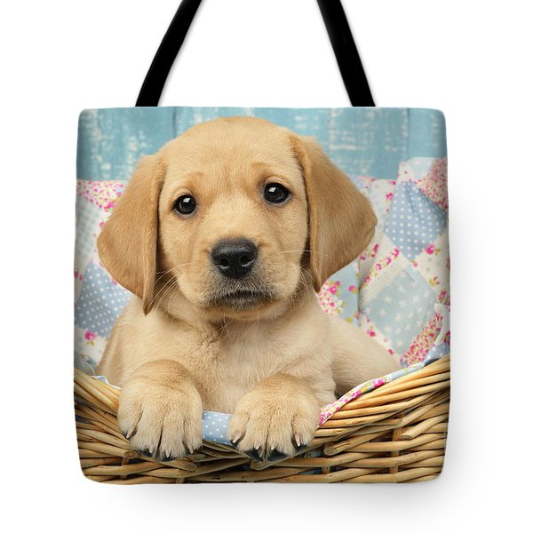 Patchwork Puppy Dp793 Tote Bag by Greg Cuddiford