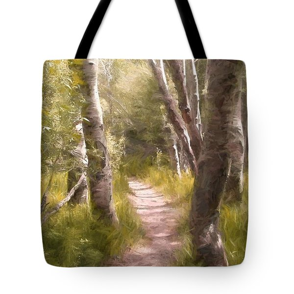 Tote Bag featuring the photograph Path 1 by Pamela Cooper