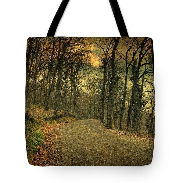 Path IIi Tote Bag by Taylan Apukovska