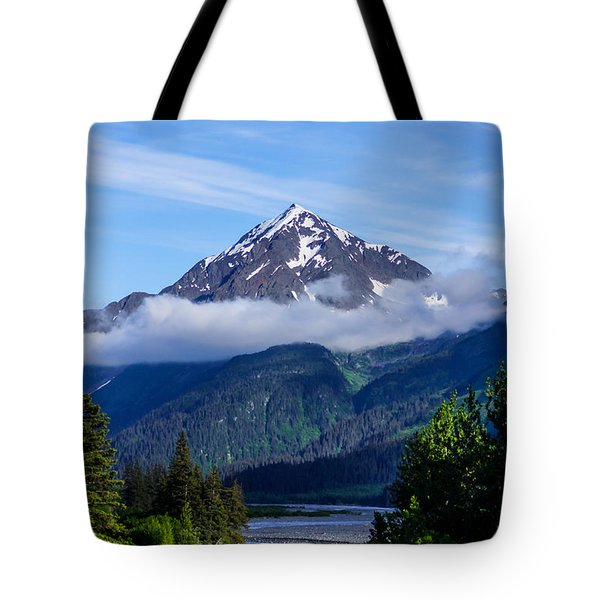 Path Through Alaska Tote Bag