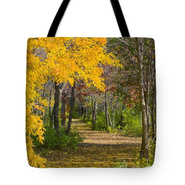 Path Through Autumn Trees Tote Bag